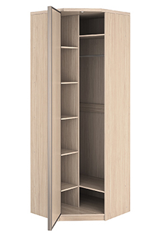 Угловой шкаф-купе 1 дверь Премиум выгодно от VittaMebel.ru